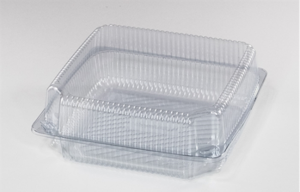 * W584NP  Plastic Hinged Container, New Closures,